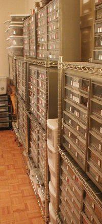 The Storage Dilemma
