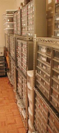 Storage inside VJS